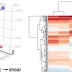 Transcriptome analysis of cell responses to applied forces